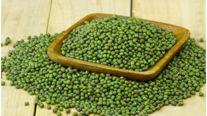 Mung Beans (Vigna radiata) – Side Effects & Health Benefits