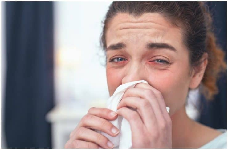 Oxymetazoline vs Phenylephrine – Which Is Better For Nasal Congestion