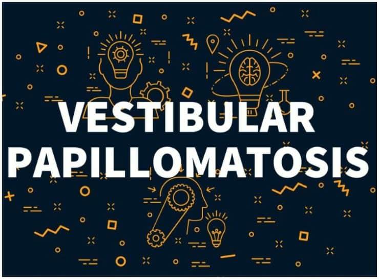 Vestibular Papillomatosis vs HPV – Symptoms, Causes, Differences
