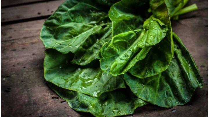 Malabar Spinach – Health Benefits, Side Effects, Taste, Recipe