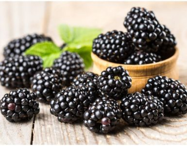 Mulberry vs Blackberry – Differences In Taste & Health Benefits