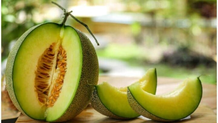 Honeydew Melon – Side Effects, Nutrition Facts, Benefits (Fiber), Smoothie Recipe