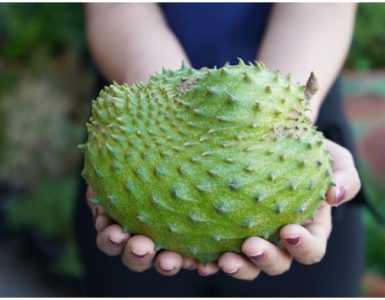 Soursop vs Cherimoya – Comparison of Health Benefits & Nutrition Facts
