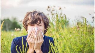 Flonase vs Claritin - Which Is The Best Allergy Medicine